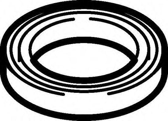 Прокладка клапанной крышки ELRING 612001