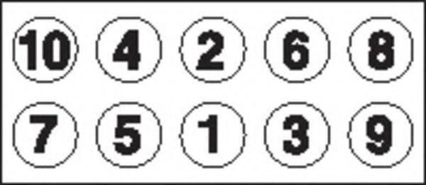Болты ГБЦ комплект PAYEN HBS476
