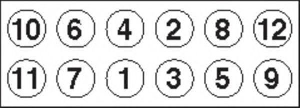 Болты ГБЦ комплект PAYEN HBS021