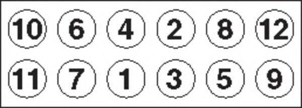Болты ГБЦ комплект PAYEN HBS 024