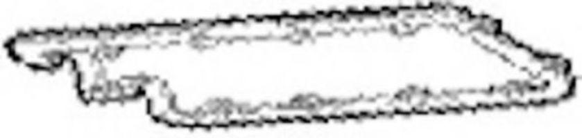 Прокладка, крышка головки цилиндра PAYEN JP070