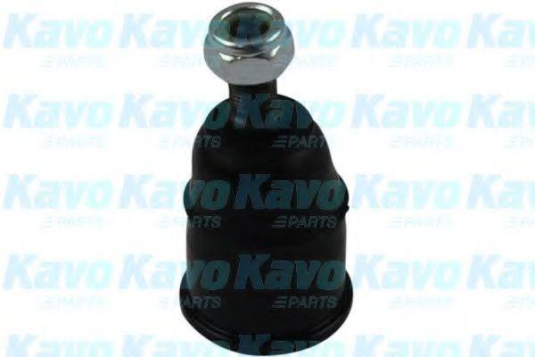 Несущий / направляющий шарнир KAVO PARTS SBJ2001
