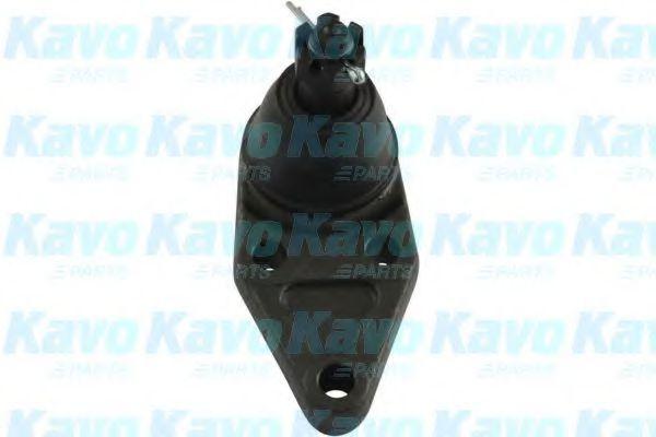 Несущий / направляющий шарнир KAVO PARTS SBJ5528