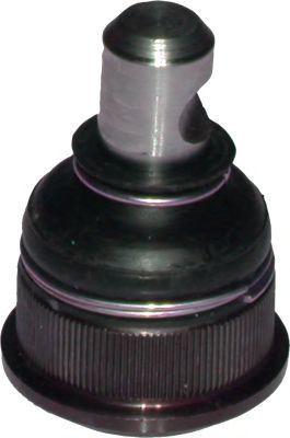 Несущий / направляющий шарнир BIRTH CX0199