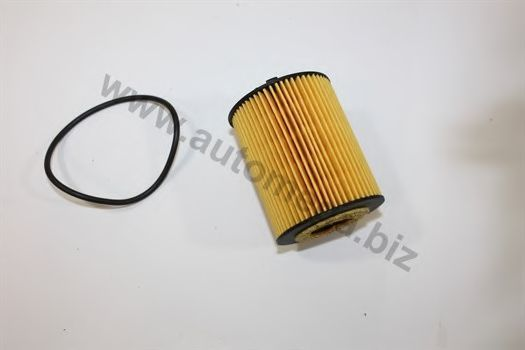 Масляный фильтр AUTOMEGA 1006500307