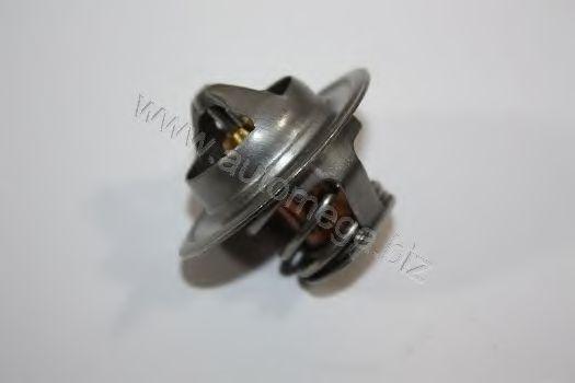 Термостат AUTOMEGA 3013380052