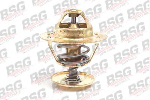Термостат BSG BSG 30-125-004
