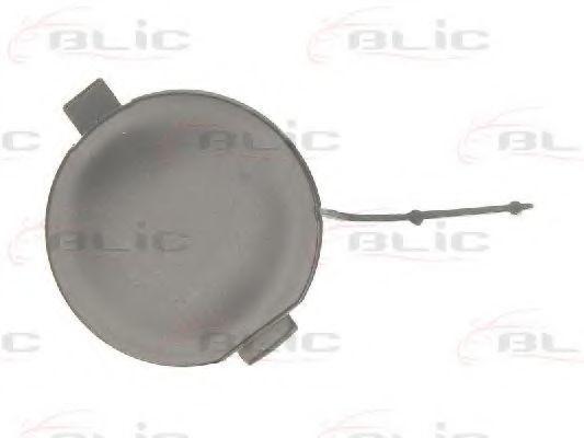 Крышка буфера прицепного оборудования BLIC 5513000109920Q