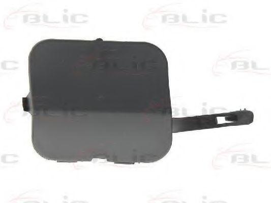 Крышка буфера прицепного оборудования BLIC 5513001301921P