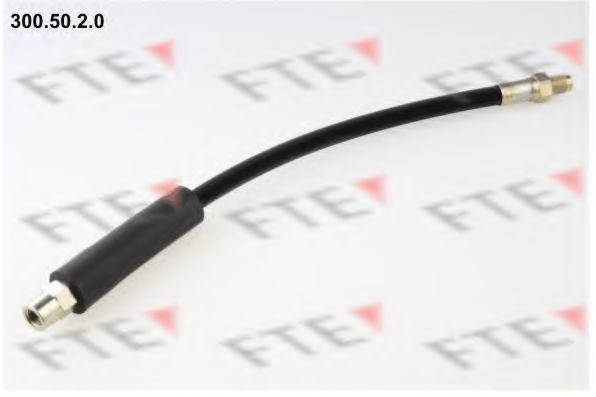 Тормозной шланг FTE 3005020