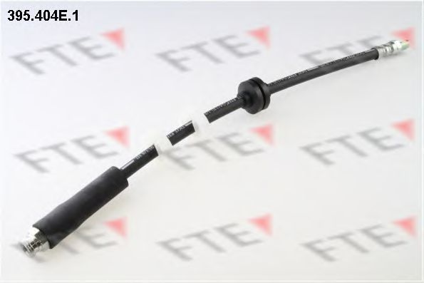 Тормозной шланг FTE 395404E1