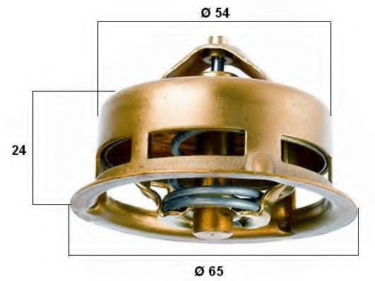 Термостат, охлаждающая жидкость WAHLER 309675