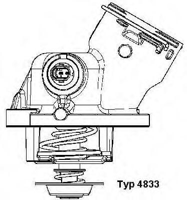 Термостат с прокладкой WAHLER 4833.100D
