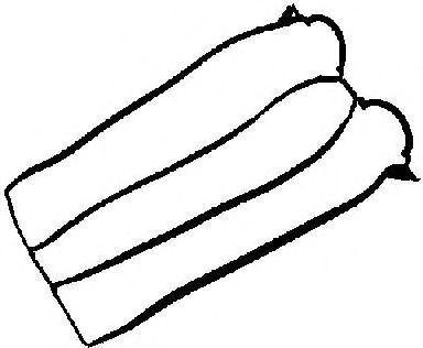 Прокладка, крышка головки цилиндра VICTOR REINZ 713384600